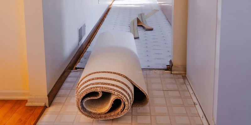 How Much Does it Cost to Replace a Carpet in an Apartment